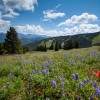 Public Lands Day bill laid over by Senate committee; I-70 traction bill moves ahead