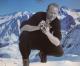 Warren Miller film SKI BUM explores family, fatherhood, loss and skiing away from pain