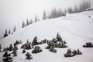 wolf creek ski area opening