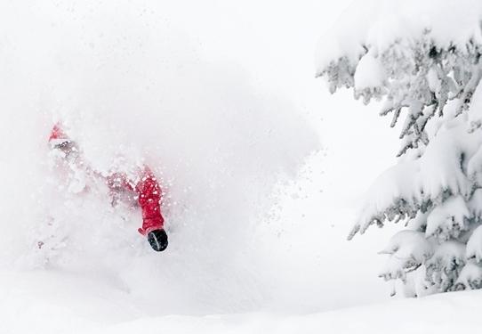 powder skiing at Vail