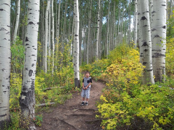 Hiking East Lake Creek trail near Edwards.