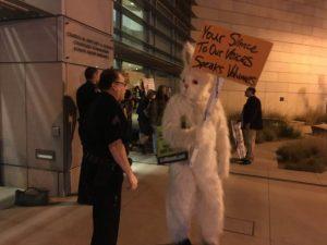 rabbit-protest