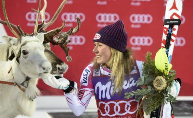 shiffrin-reindeer