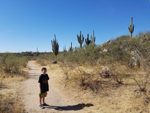hiking in Catalina Mountains
