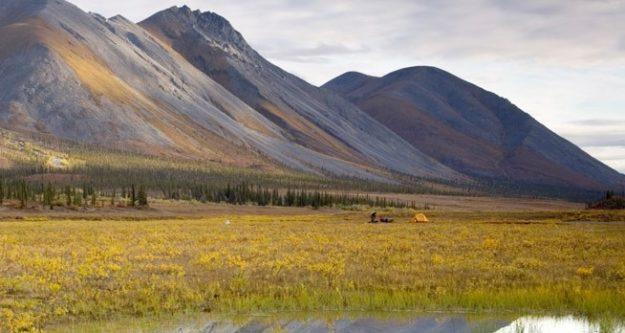 arctic national wildlife refuge